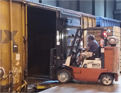 Ward Warehouse Forklift Operator